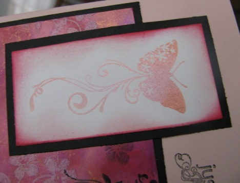 shimmering butterfly