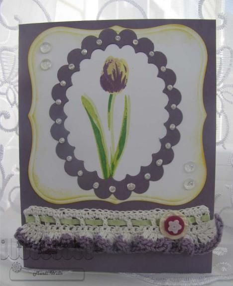 KS tulip